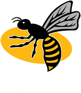 Wasps Rugby